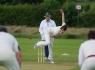 cricket-724618_1280